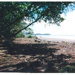 Beach at Domincalito