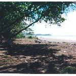 Beach at Domincalito