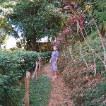 Costa Rica visitor and dining spots