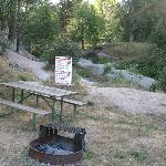 Picnic table and fire pit for each site