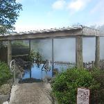 Pool Anlage