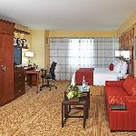 Spacious King Guest Room