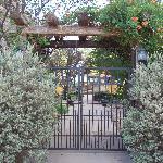 Street entrance to the garden