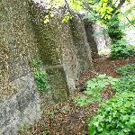 Wall surrounding the garden