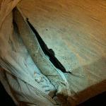 Moldy Ripped Mattress