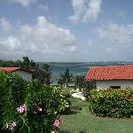 Foto di Coral Cove Cottages & Apartments