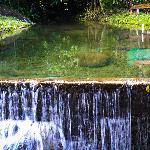 One of the two natural stream pool side by side