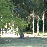 A view of the beautiful grounds