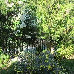 Le Pension~garden