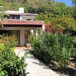 casa vista dal giardino