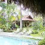 Pool gardens