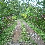 Entrance -  La Palapa Ecolodge Resort.
