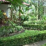 Garden - La Palapa Ecolodge Resort.
