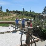 Everyone likes a good bocce ball competition.