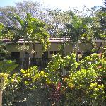 Habitaciones frente a la pisina