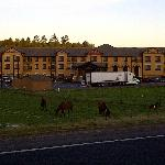 View of Hotel Driving In