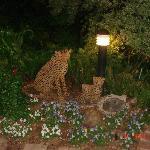 Park like Garden