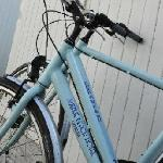 Avenue Beach Bikes