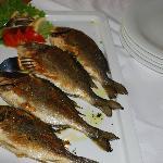 Feine Fische im Speisesaal