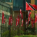Flags At Entrance of Hyatt complex