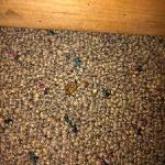 Dead bugs around the nightstand and under the bed.