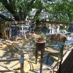 Treehouse Deck A