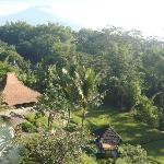 Photo of Padi City Resort