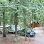 100 spacious campsites and 7 cabins. We're big rig friendly!