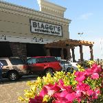 Side View of Biaggi's