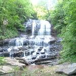 Pearson's Falls Foto