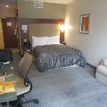 Room 705, Junior Suite