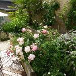 Fleurs patio