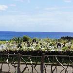 View of Hanga Roa Cemetery