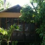 Studio tucked into the jungle