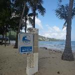 Есть маршрут эвакуации при цунами
