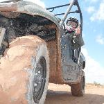Try the excursion in buggy!