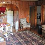 Adirondak cabin (2 bdrm)