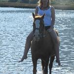 Riding (swimming with horses) at Golden Spur