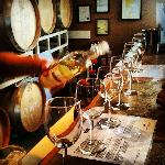 Book a wine tour, there are over 100 wineries near by!