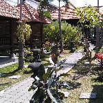d garden