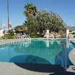 pool at Kings Inn, May 2012
