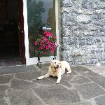Jessie welcomes all our guests