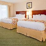 2 Queen bed Suites