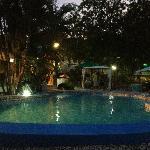 Palm Inn Foto