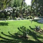 Garden, left side