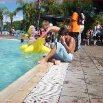 warm water pool