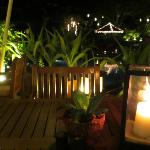 Nightime view from table
