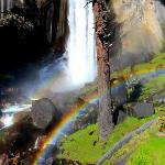 View of vernal falls ( a short walk away from curry)