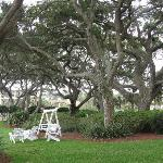 Hotel grounds, nice swing to sit on
