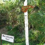 Sign to Clairfont